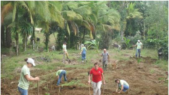 Reforestation Efforts Support a Local Family